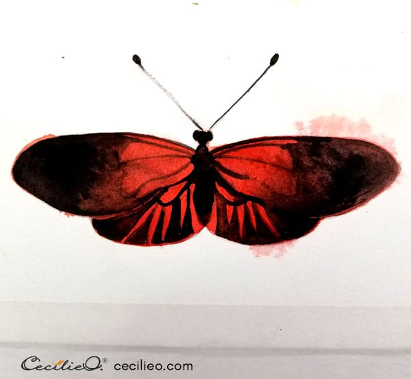 Painting the wing pattern with black watercolor.