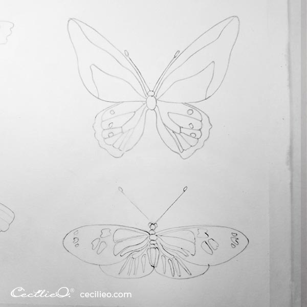 Completed butterfly drawings