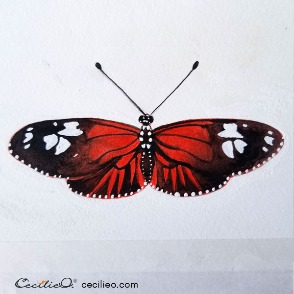 The completed butterfly, after cleaning up outlines with white gouache.
