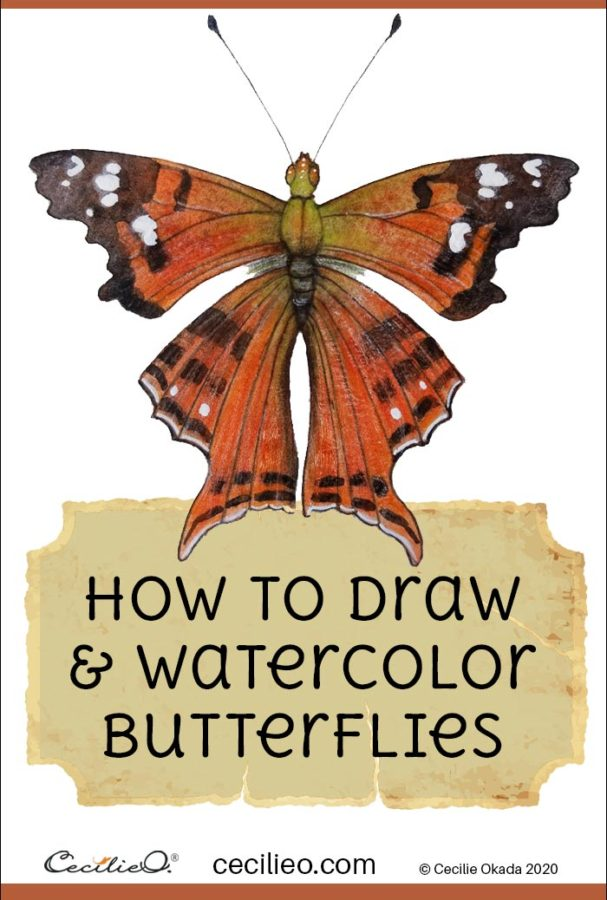How to Draw & Watercolor Butterflies Step by Step: 4 Colorful Butterflies
