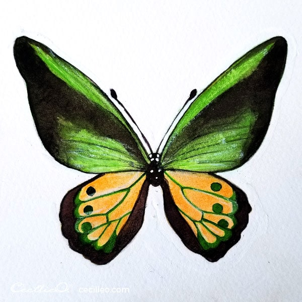 Completed green butterfly