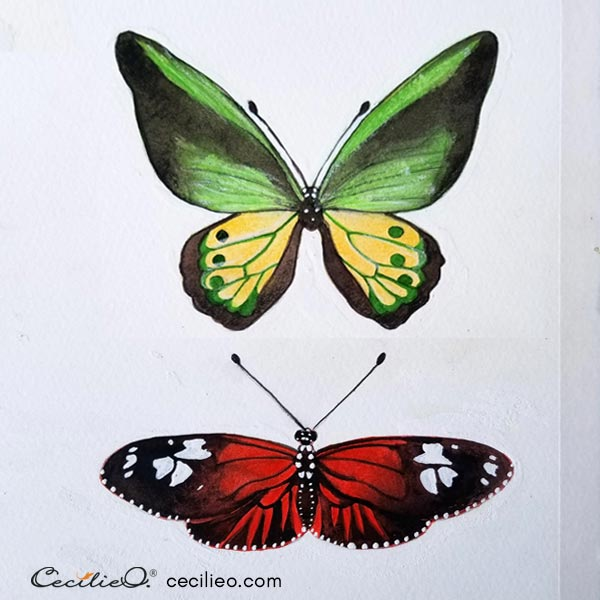 Two completed butterfly watercolors