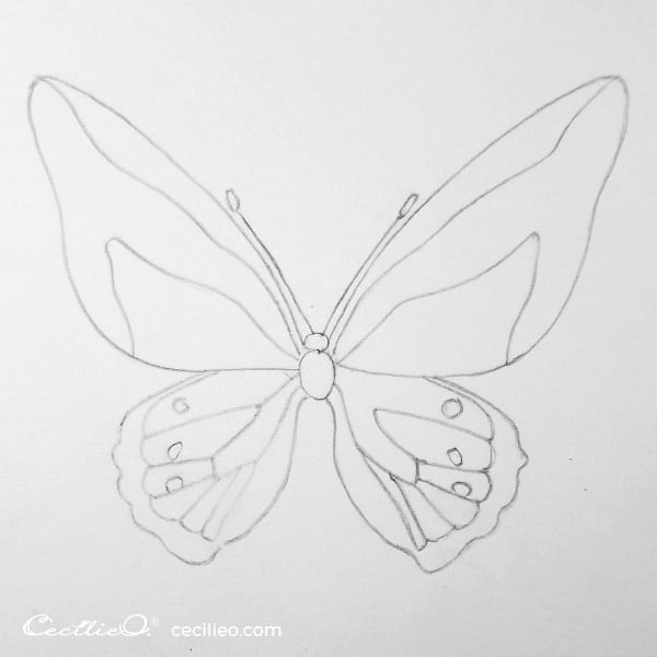 Completed butterfly drawing