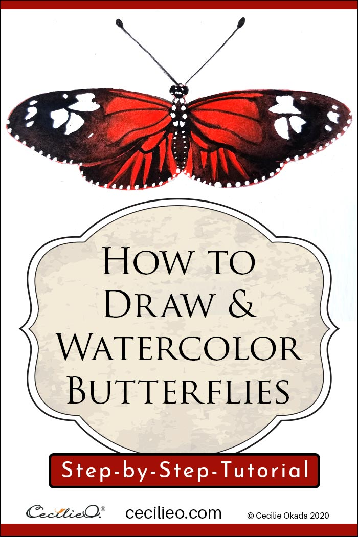 How to draw and watercolor butterflies. Step by step tutorial by Cecilie Okada.