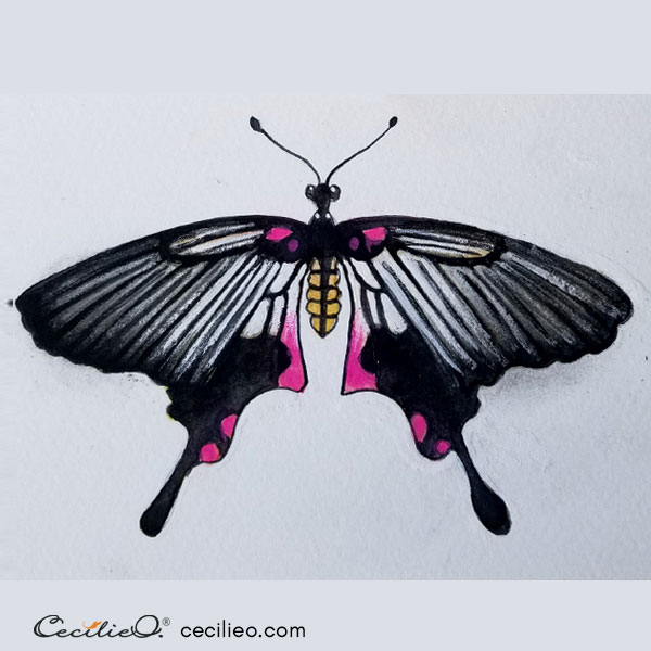 Completed swallowtail watercolor