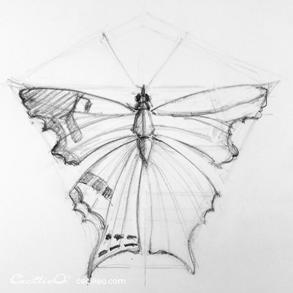 Draw the pattern on the left butterfly wing.