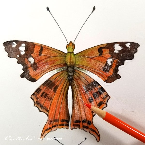 Retouching with colored pencils