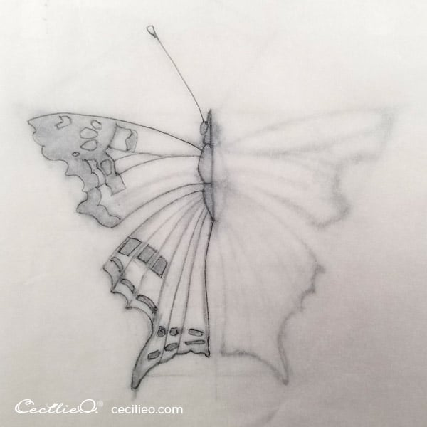 Place tracing paper over the drawing and draw the outline of the left side of the butterfly.