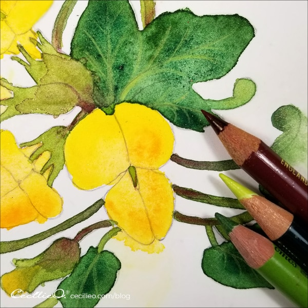When the watercolors are all dry, draw in the veins of the leaves with colored pencils.