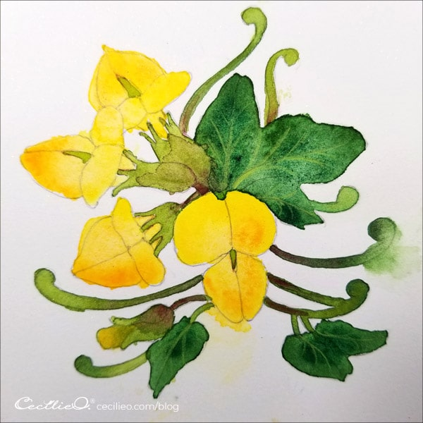 The watercolor of the yellow flower is all done.