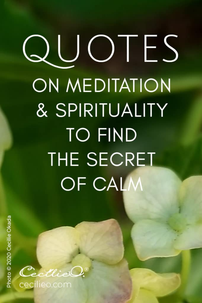 Quotes on Meditation & Spirituality to Find the Secret of Calm