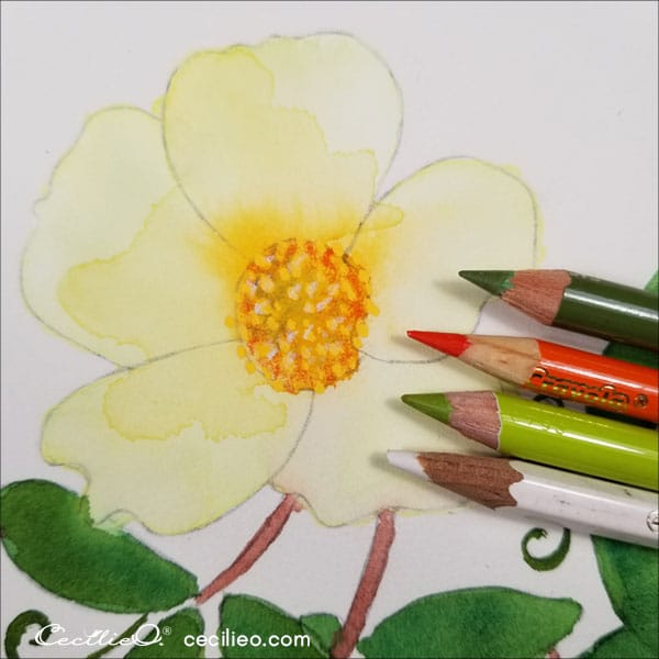 Colored pencils for the flower centre