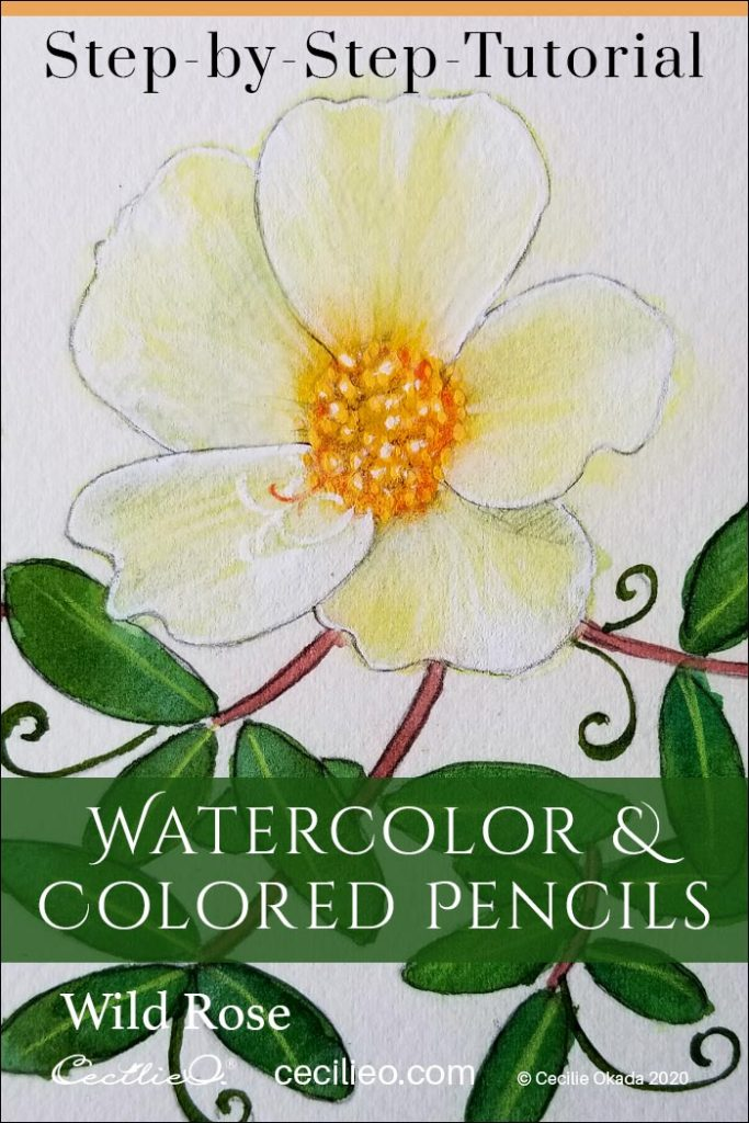 A Breezy, Beautiful Wild Rose Watercolor Tutorial