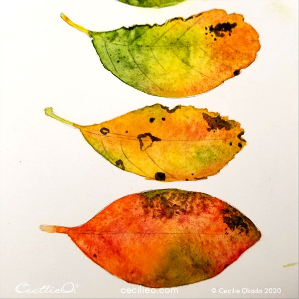 Painting dark spots on the leaves.