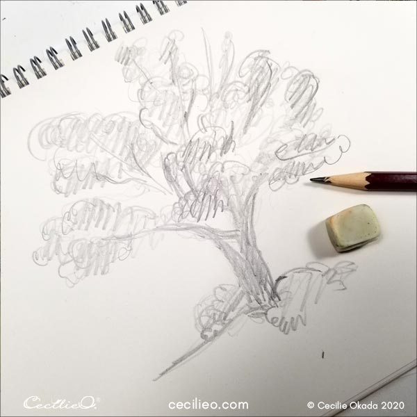 Rough sketch of the tree.