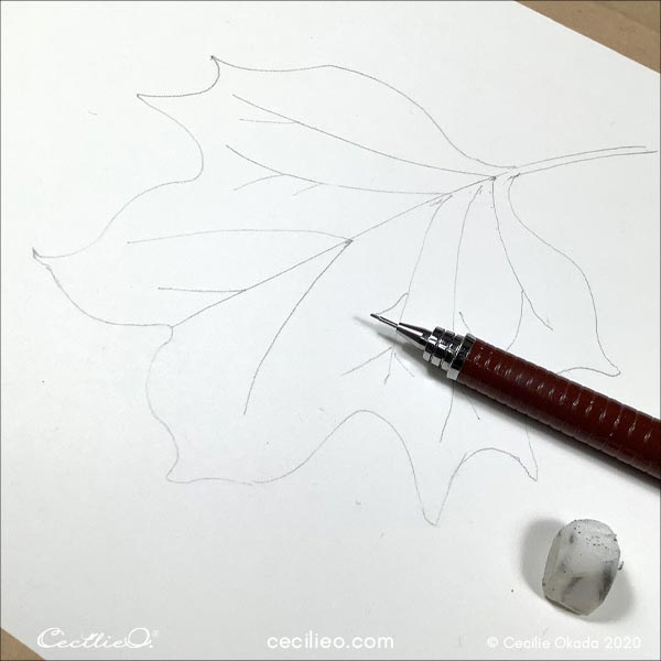 Drawing the leaf.