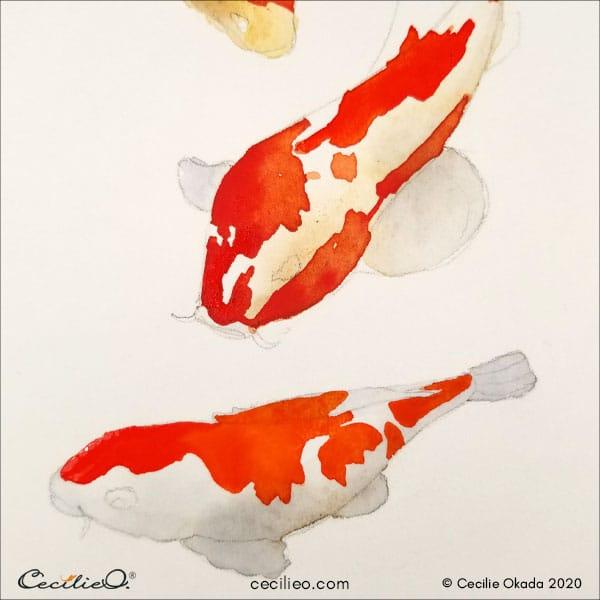 Orange watercolor splashes on the koi fish 3.