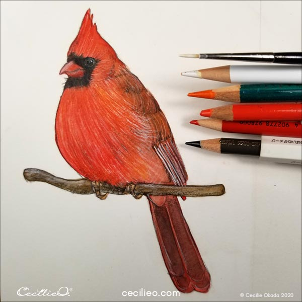 Continue drawing with colored pencils on top of the paint.