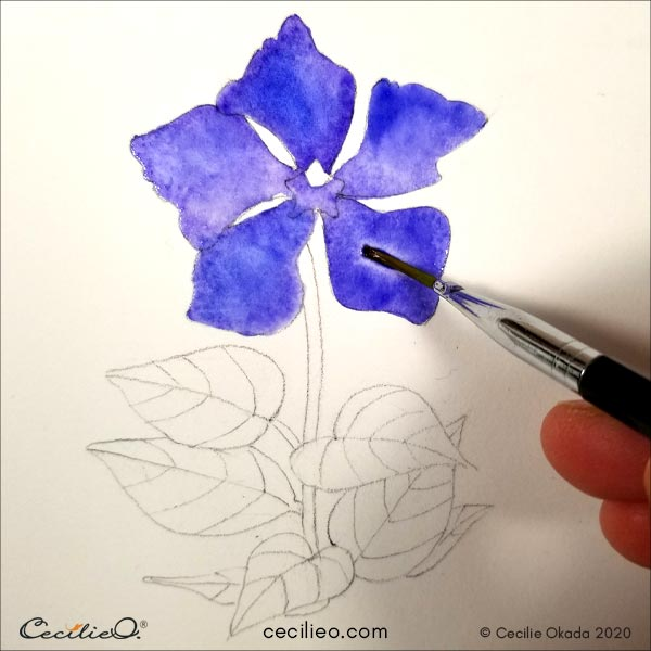 Painting blue watercolor on the petals.