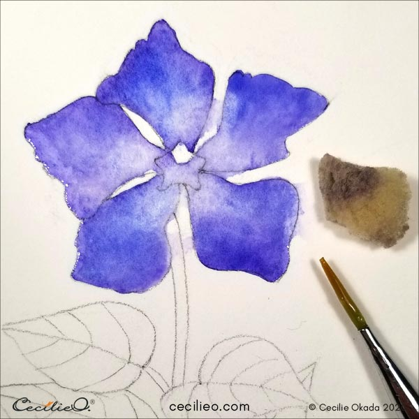 Soaking up blue watercolor with a sponge in the center of the flower.