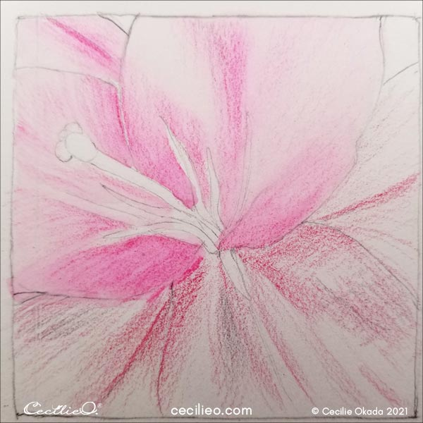 New test, drawing the petals with a darker pink.
