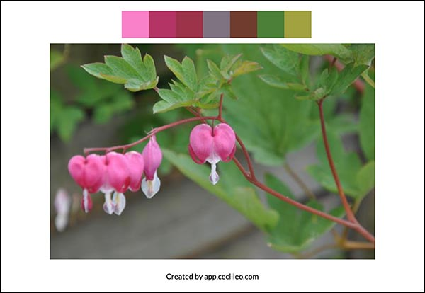 Color palette for the reference photo.