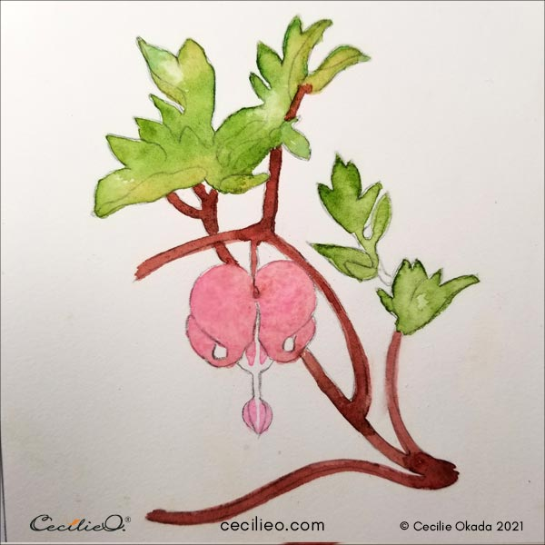Painting the bleeding heart flower head and the stems with watercolor.