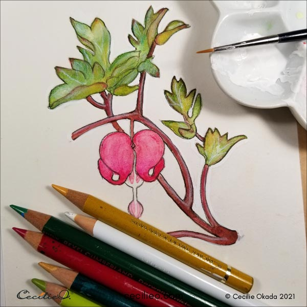 Drawing details on the leaves with white gouache and colored pencils.