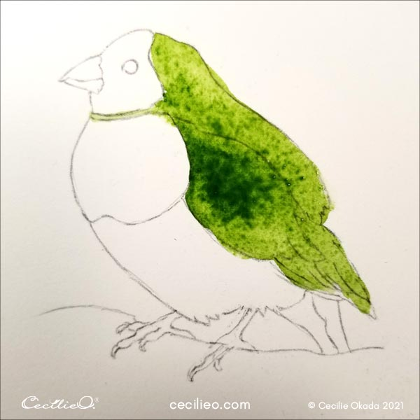 Watercolor green for the wing and part of the bird's body.