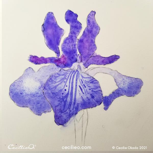 Watercolor the full flower head with purple color.