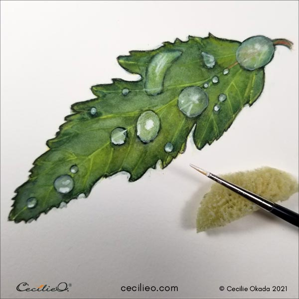 Painting highlights on the water drops.