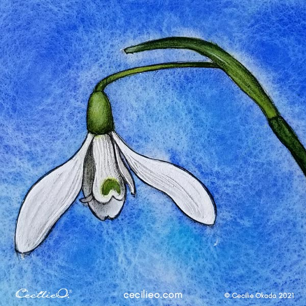 The finished watercolor spring flower snowdrop.