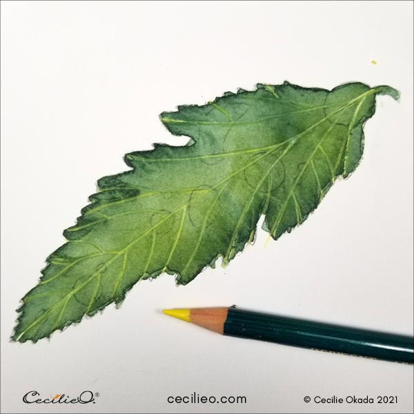 Drawing with green colored pencil again.