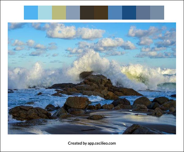 The reference photo with a manual color palette.