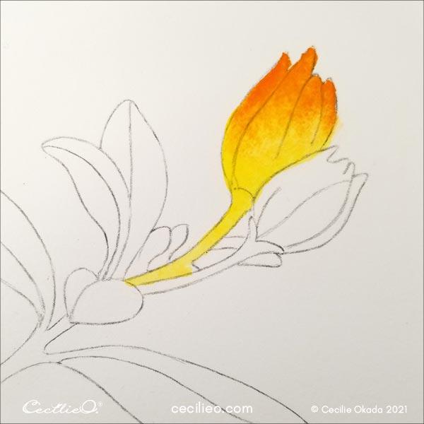 Add orange watercolor and create a gradiant.