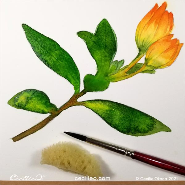 Paint all the leaves with variations of green watercolor.