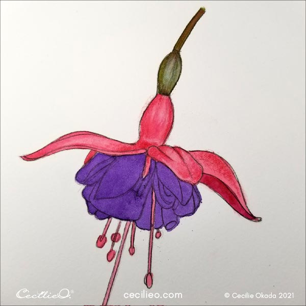 Complete drawing 3D effects on the pink petals.