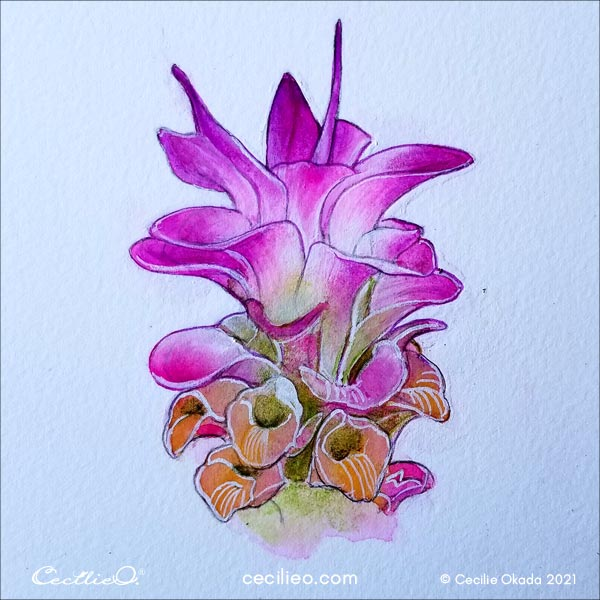 The completed watercolor lily painting.