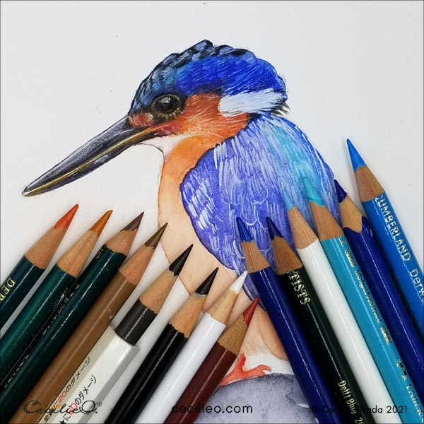 All the colored pencils used for the eye and surrounding feathers.