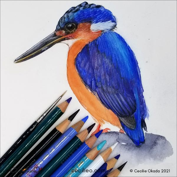 Using a wide range of colors for the feathers.