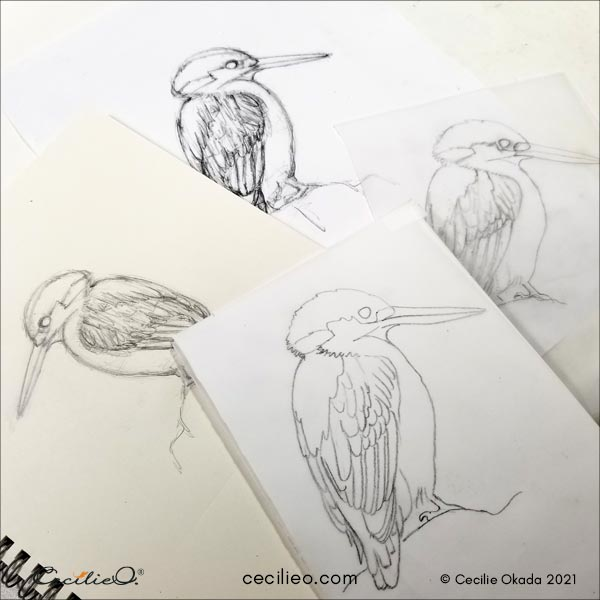 Drawing of kingfisher.