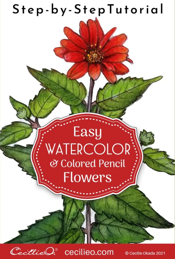 Easy watercolor art with a step-by-step tutorial for the beautiful red Mexican sunflower. Focus on the whole plant.
