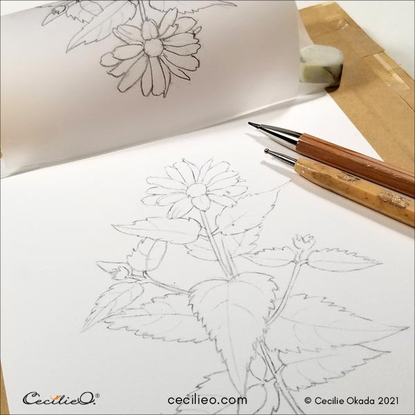 Transfer of the clean outline of the flower to watercolor paper.
