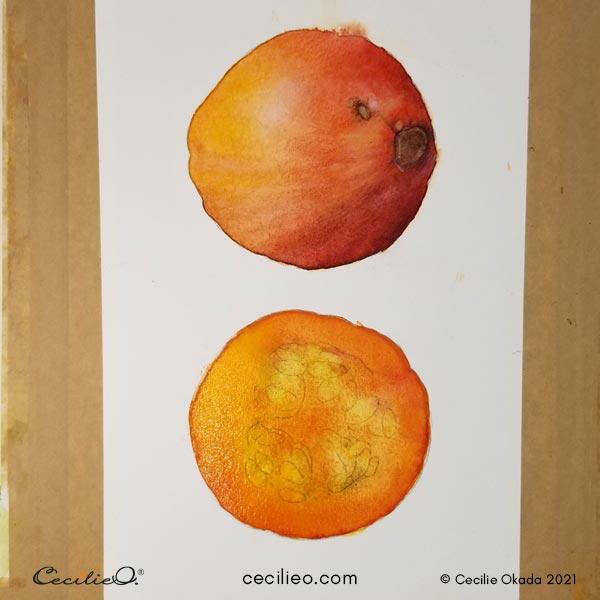 Adding more orange watercolor to the cut pumpkin.