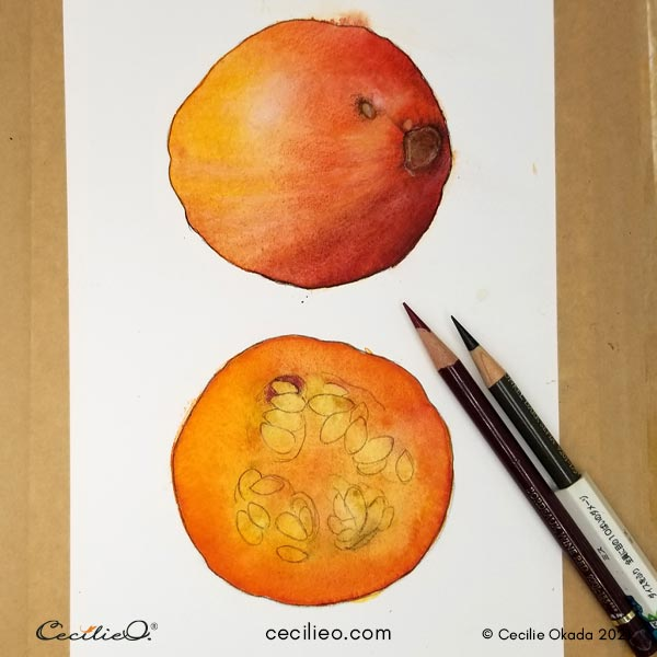 Drawing outlines with a sharp brown colored pencil.