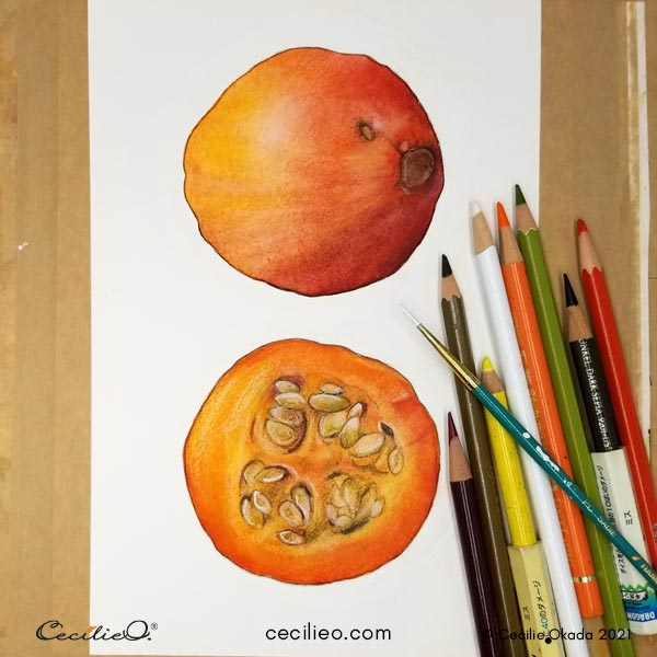 Completing the cut pumpkin with colored pencils and some white gouache.