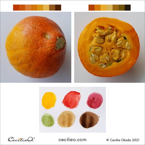 Finding the color palette for the pumpkin reference photos.
